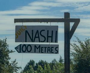 Nashi on 1B (Hoeka Road)